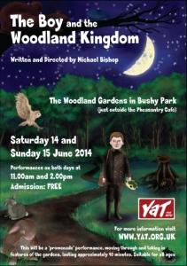 The Boy and the Woodland Kingdom